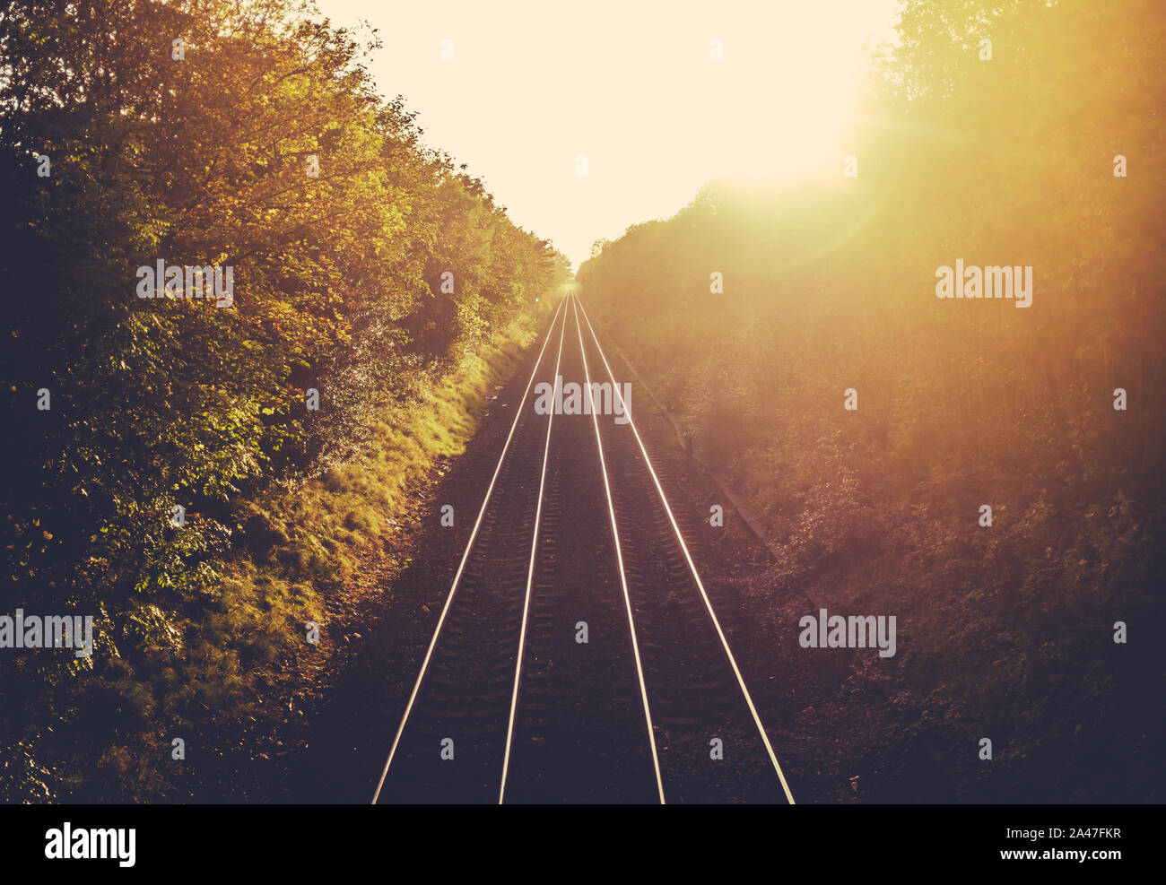 Train Tracks Stretching Into The Distance At Sunset Stock Photo