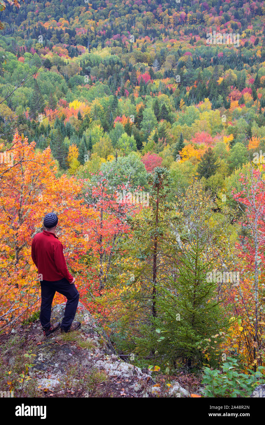 Hiker on rocky ledge looking down at beautiful peak fall foliage in northern New Hampshire, early October, Second College Grant Stock Photo