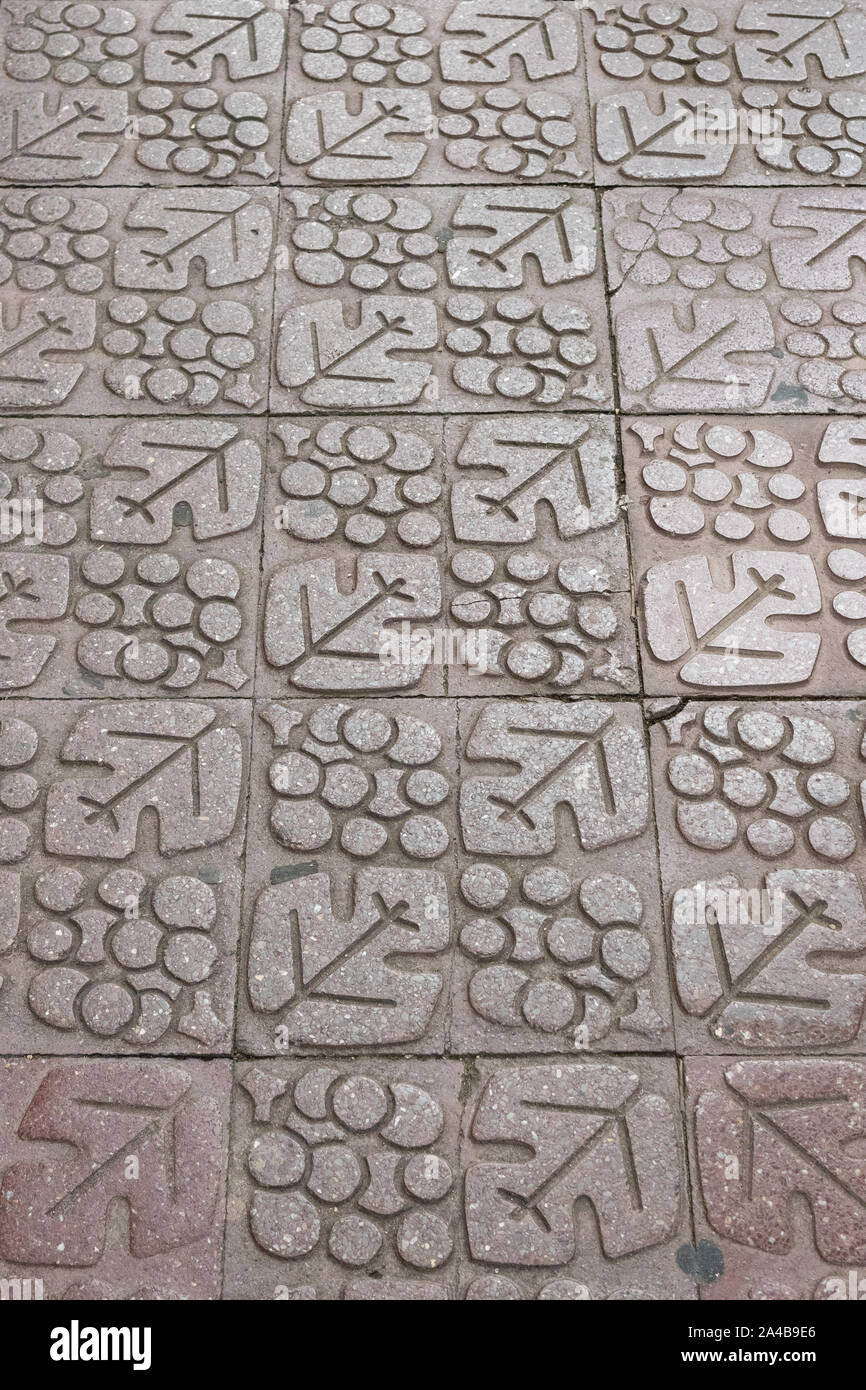 grape and vine wine motif paving in Logrono, Northern Spain, Europe Stock Photo