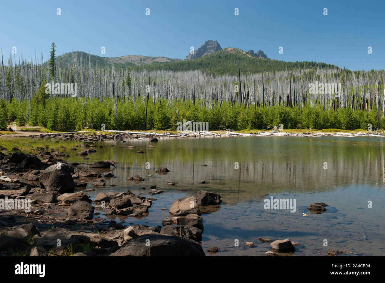 The east side of Three Fingered Jack, in Oregon's Mt. Jefferson Wilderness, as seen from Jack Lake. Stock Photo