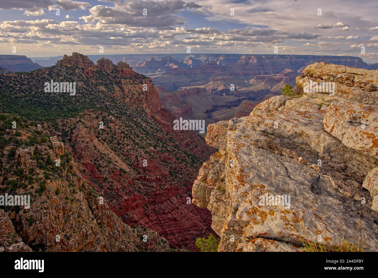 Canyon view from East Buggeln Hill, South Rim, Grand Canyon, Arizona, United States Stock Photo