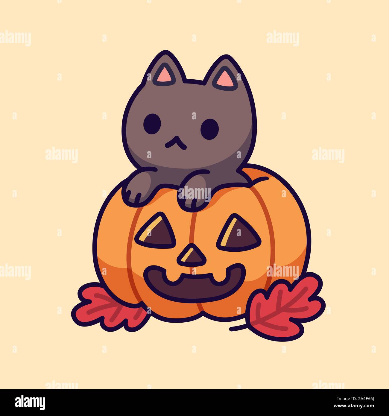 Cute Black Cat Inside Halloween Pumpkin With Carved Spooky Face