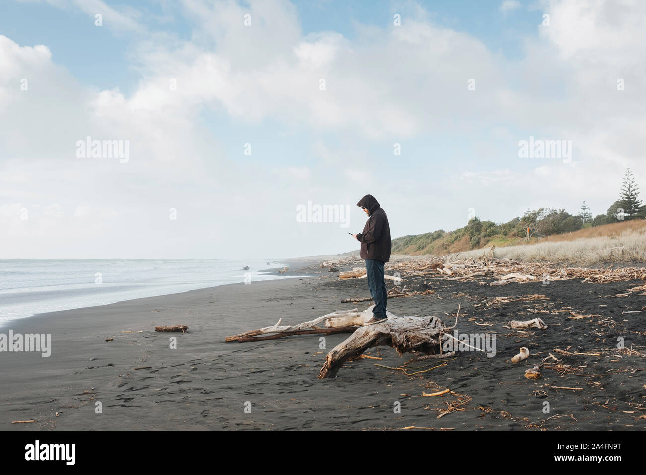 Man standing on driftwood looking at mobile phone at the beach Stock Photo