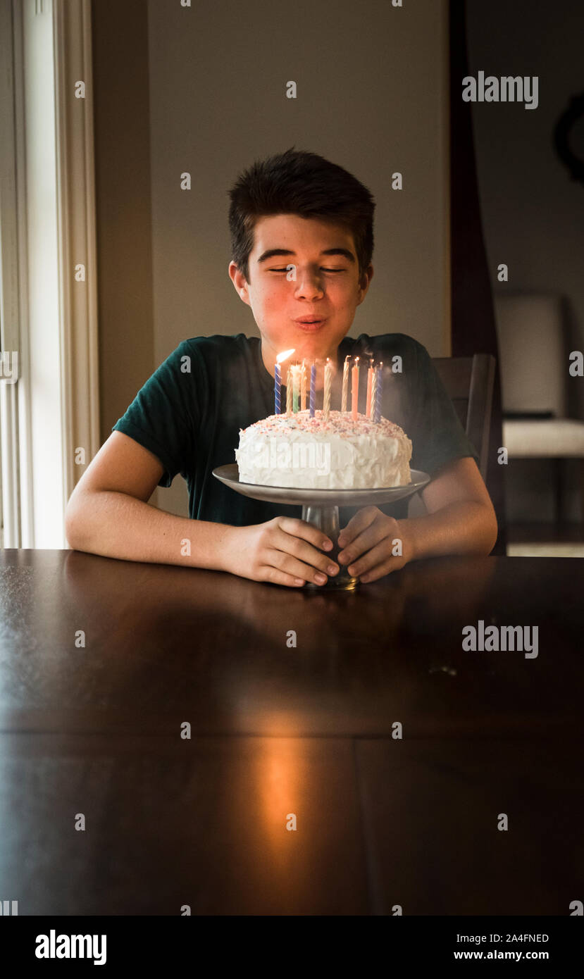 Cool Teen Boy Blowing Out The Candles On His Birthday Cake At The Table Funny Birthday Cards Online Alyptdamsfinfo