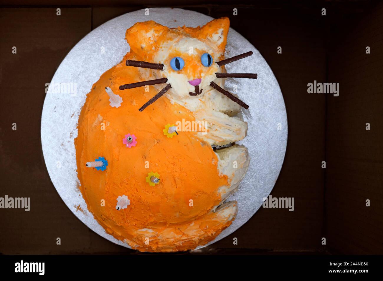 Excellent Happy Cat Cake Stock Photos Happy Cat Cake Stock Images Alamy Funny Birthday Cards Online Necthendildamsfinfo