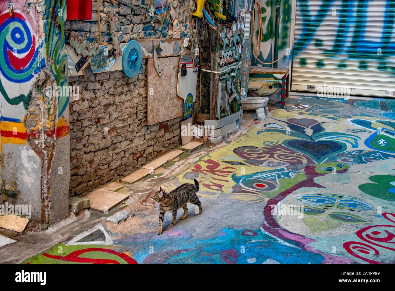 Street cat walking in an Istanbul alleyway (Yaprak Çk. Emekyemez ). Alley decorated in street art. Stock Photo