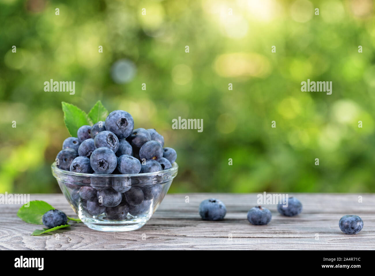 Blueberries in glass bowl and scattered on wooden table. Summer still life Stock Photo