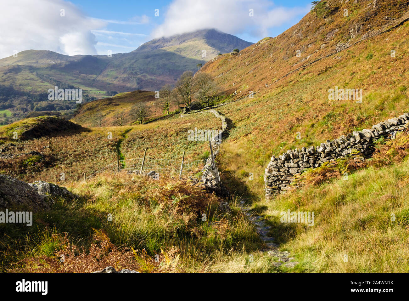 View along stone wall to Moel Hebog with low cloud from footpath above Nant Gwynant in hills of Snowdonia National Park in autumn. north Wales, UK Stock Photo