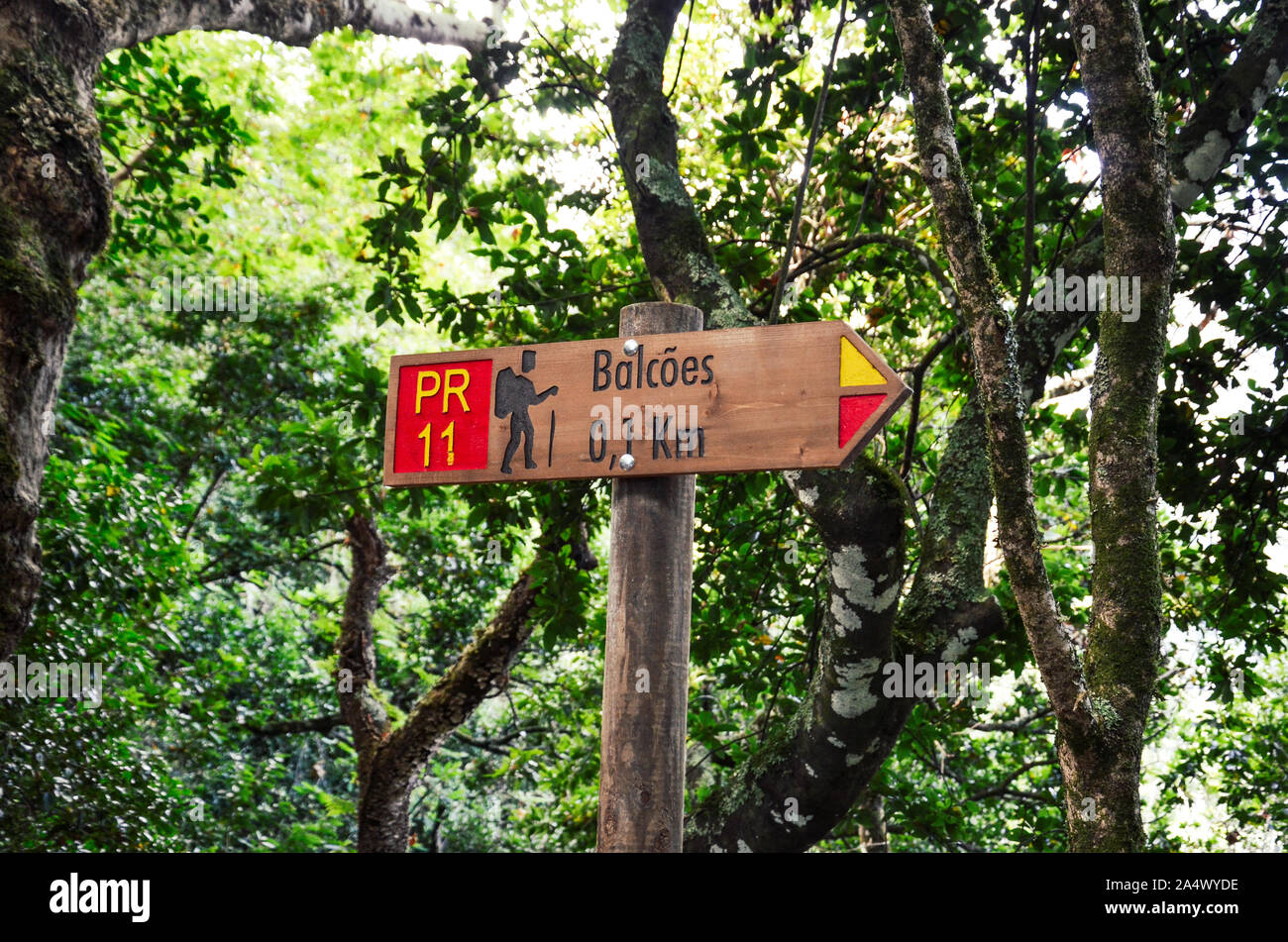 Tourist sign giving distances and directions on the famous Levada dos Balcoes Trail in Madeira, Portugal. Information sign, marking system, marker. Green trees and forest in the background. Stock Photo