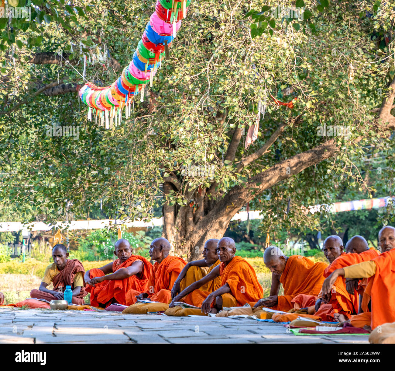 Senior Buddhist monks sitting infront of Maya Devi Temple at Lumbini, Nepal Stock Photo