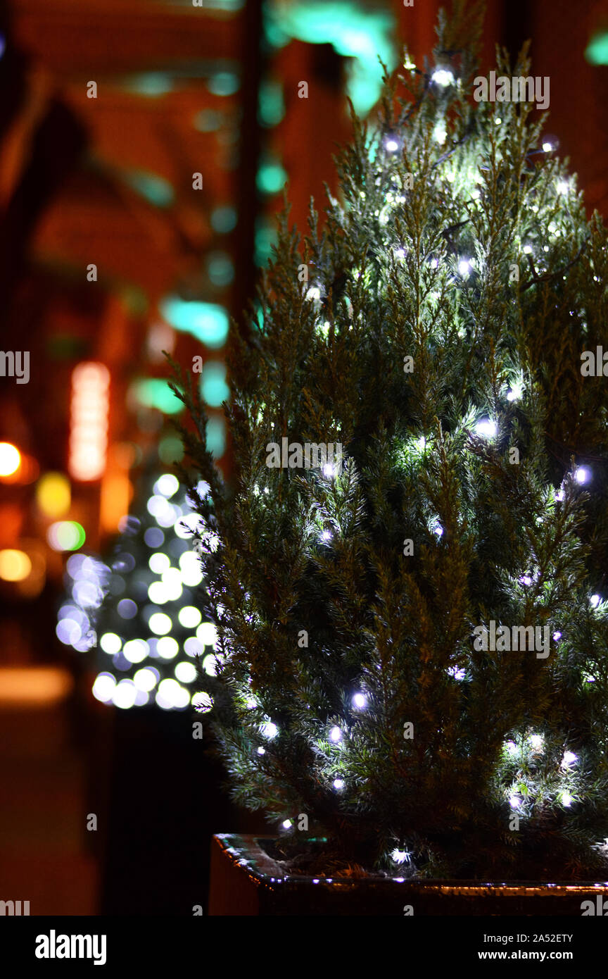 Christmas Outdoor Decoration Led Light Garland On A Festive Tree In Night With Blurred Street Light Background Selective Focus Vertical Wallpaper Stock Photo Alamy