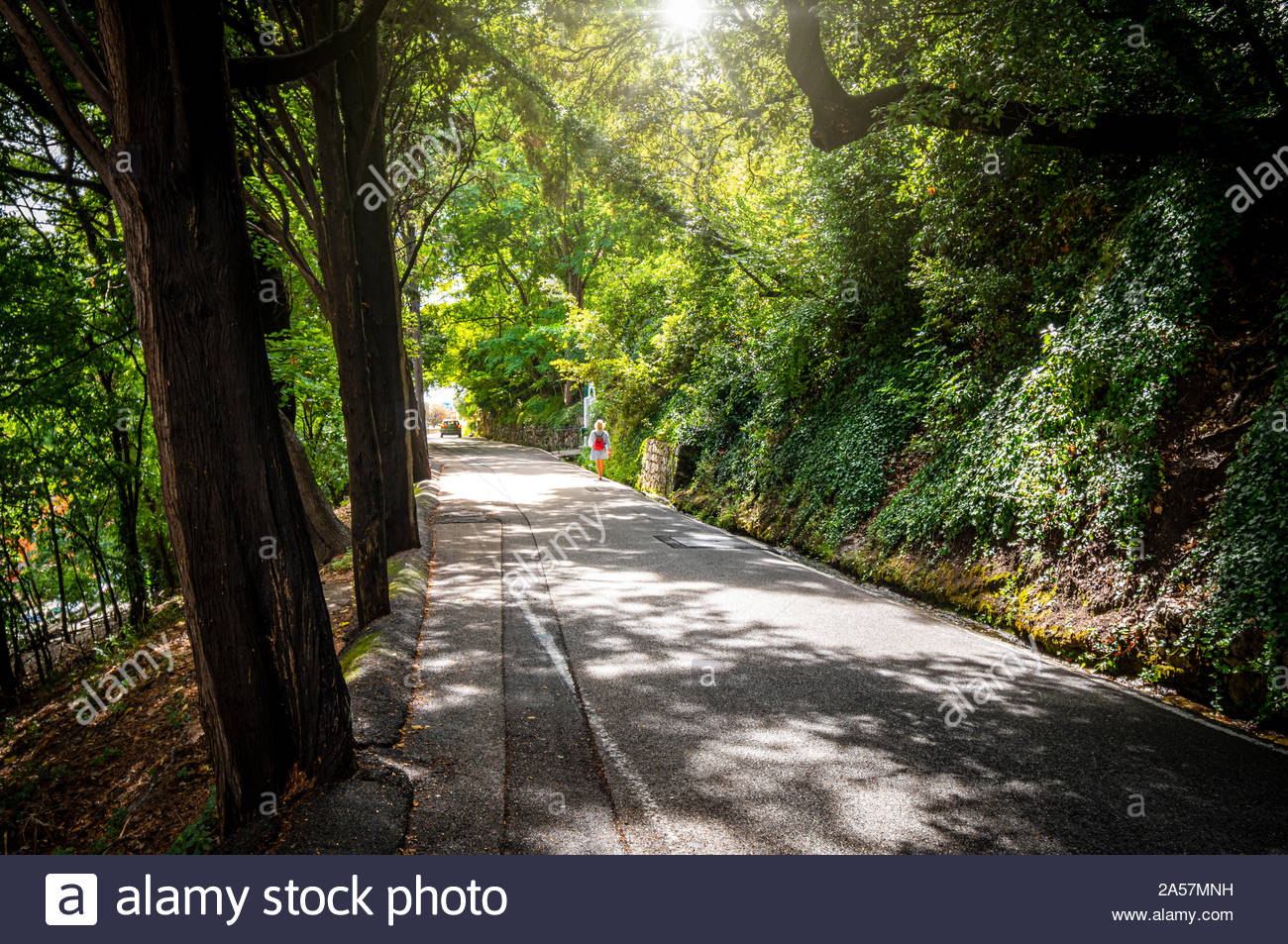 A solo young female traveler with a backpack walks in the sunlight on a tree lined street on Castle Hill, in the Mediterranean city of Nice France Stock Photo