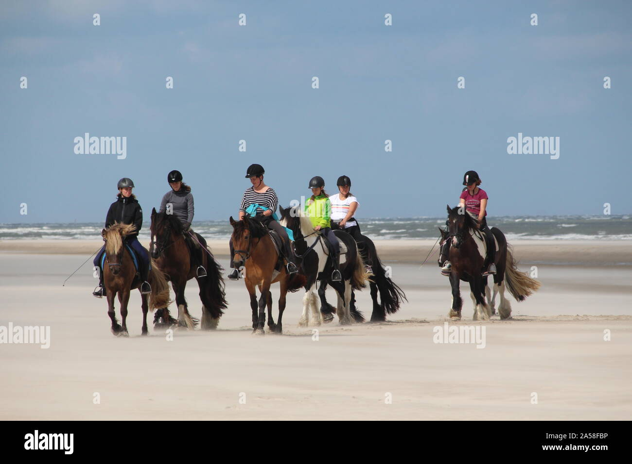 Horse back riding at the beach of Langeoog (Germany) Stock Photo