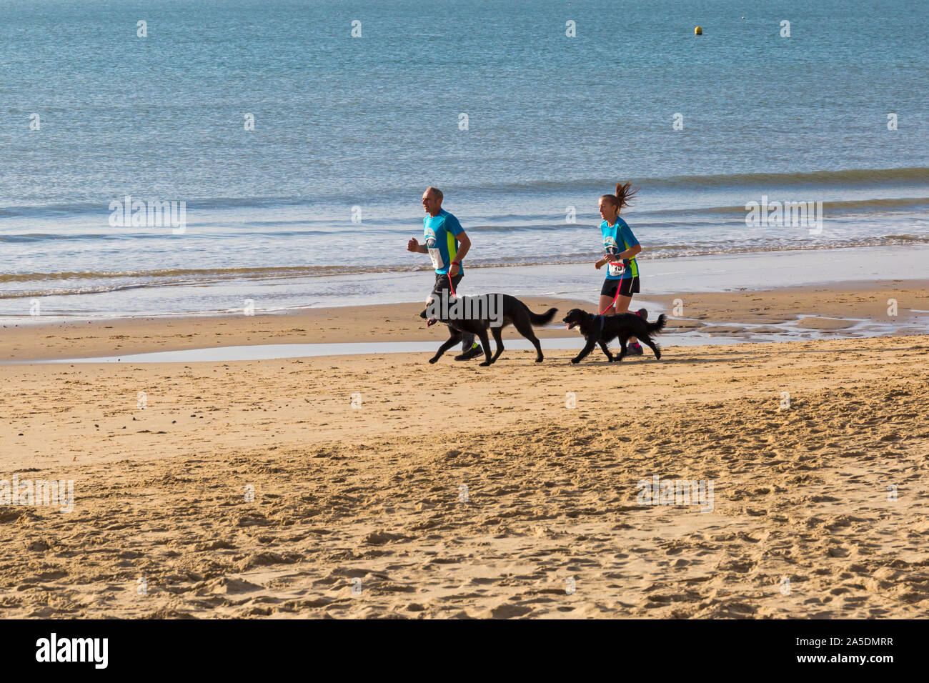 Bournemouth, Dorset, UK. 20th October 2019. Participants take part in the Beach Race, Race the Tide, a low tide beach run along the beautiful shoreline of Bournemouth beach towards Sandbanks beach. Runners run the 5k or 10k race along the seashore and over the groynes before the tide comes in. A dry chilly early morning with some sunshine. Credit: Carolyn Jenkins/Alamy Live News Stock Photo