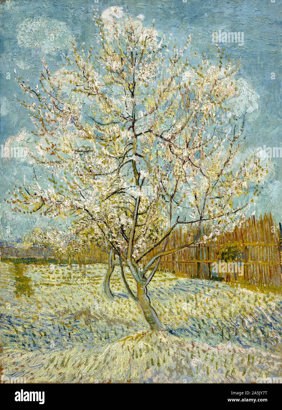 Vincent Van Gogh The Pink Peach Tree Painting 1888 Stock Photo Alamy