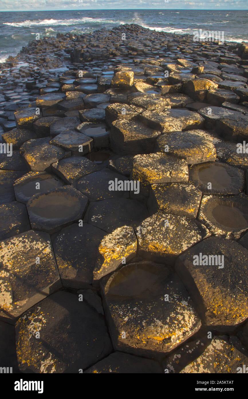 Giant's Causeway, columnar basalt columns, result of an ancient volcanic fissure eruption, Northern Ireland, UK, World Heritage site Stock Photo
