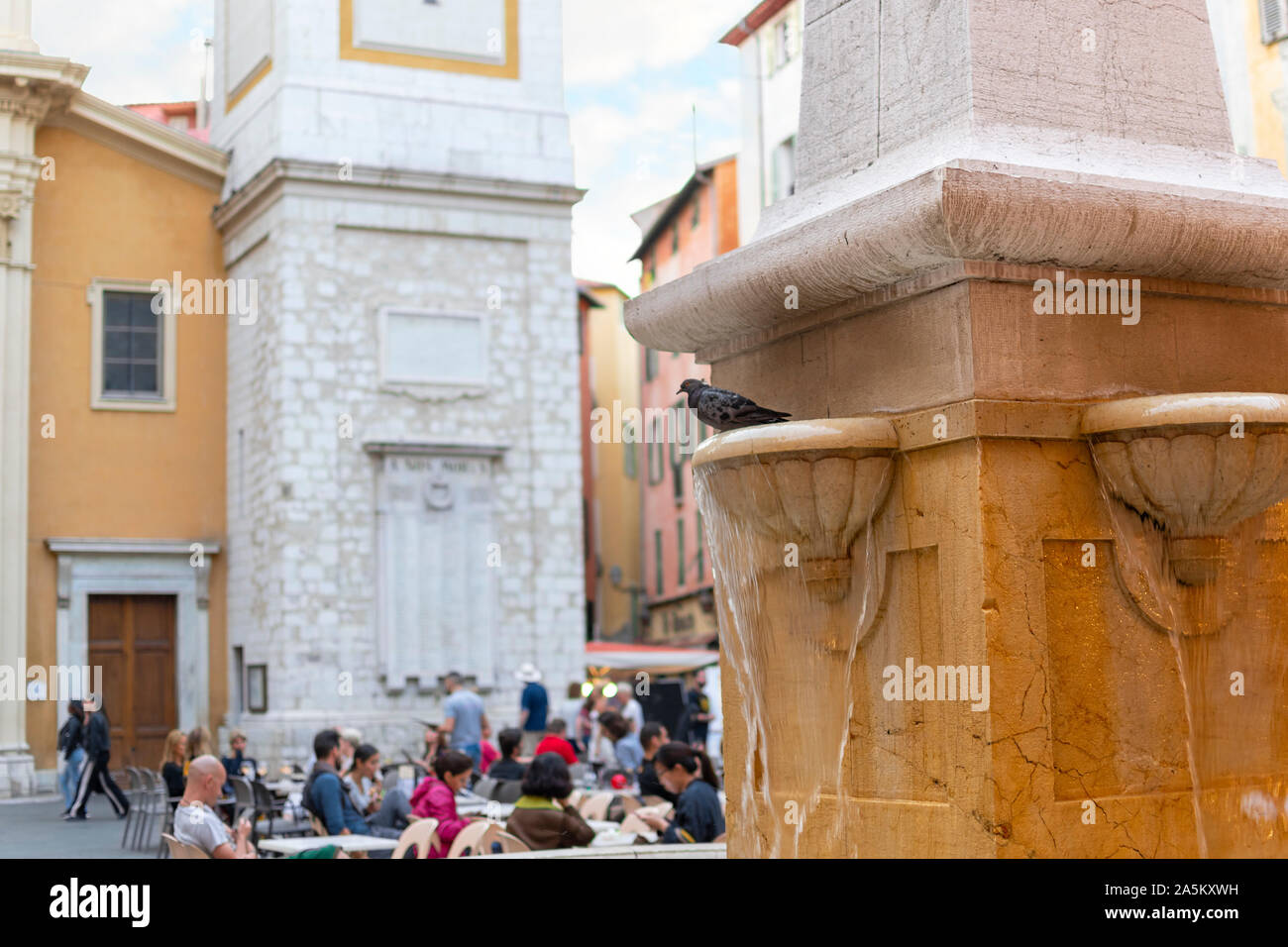 A pigeon sits on a water shelf on a public fountain in front of the Cathedral Sainte Reparate in Place Rossetti, on the French Riviera in Nice France Stock Photo