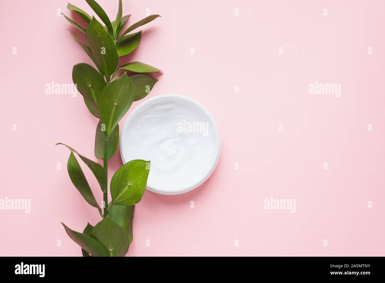 Means for skin care, rejuvenation and hydration of the face. Moisturizing cream on a patel pink background with a branch of green . The philosophy of Stock Photo