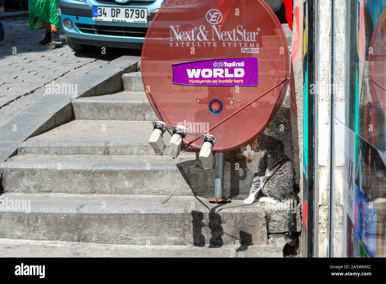 A stray street cat sits in the shade under a satellite dish in the Galata district of Istanbul, Turkey. Stock Photo