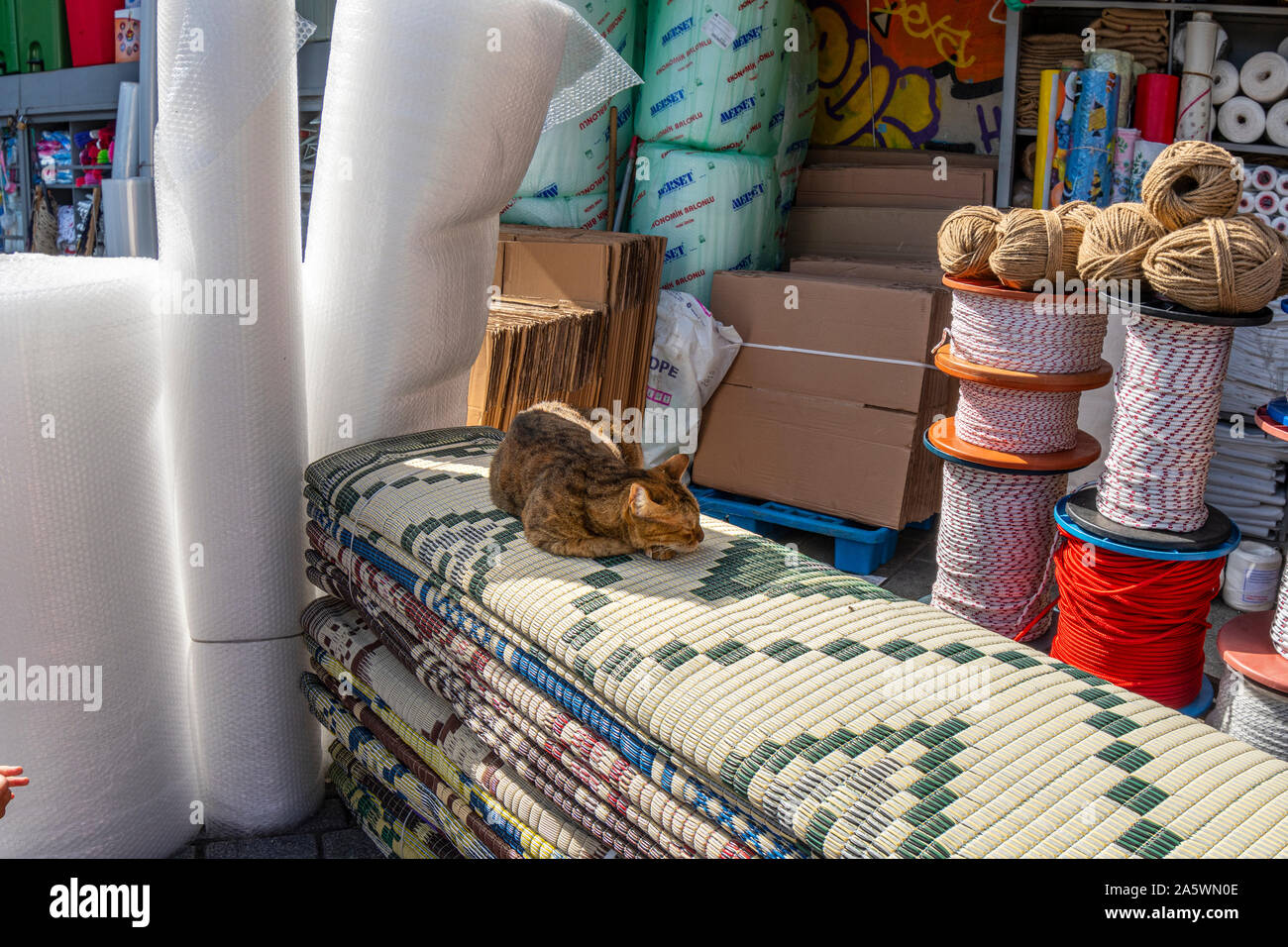 A stray tabby cat sleeps on fabric at an outdoor rug and fabric vendor in the Eminonu bazaar area of Sultanahment district. Stock Photo