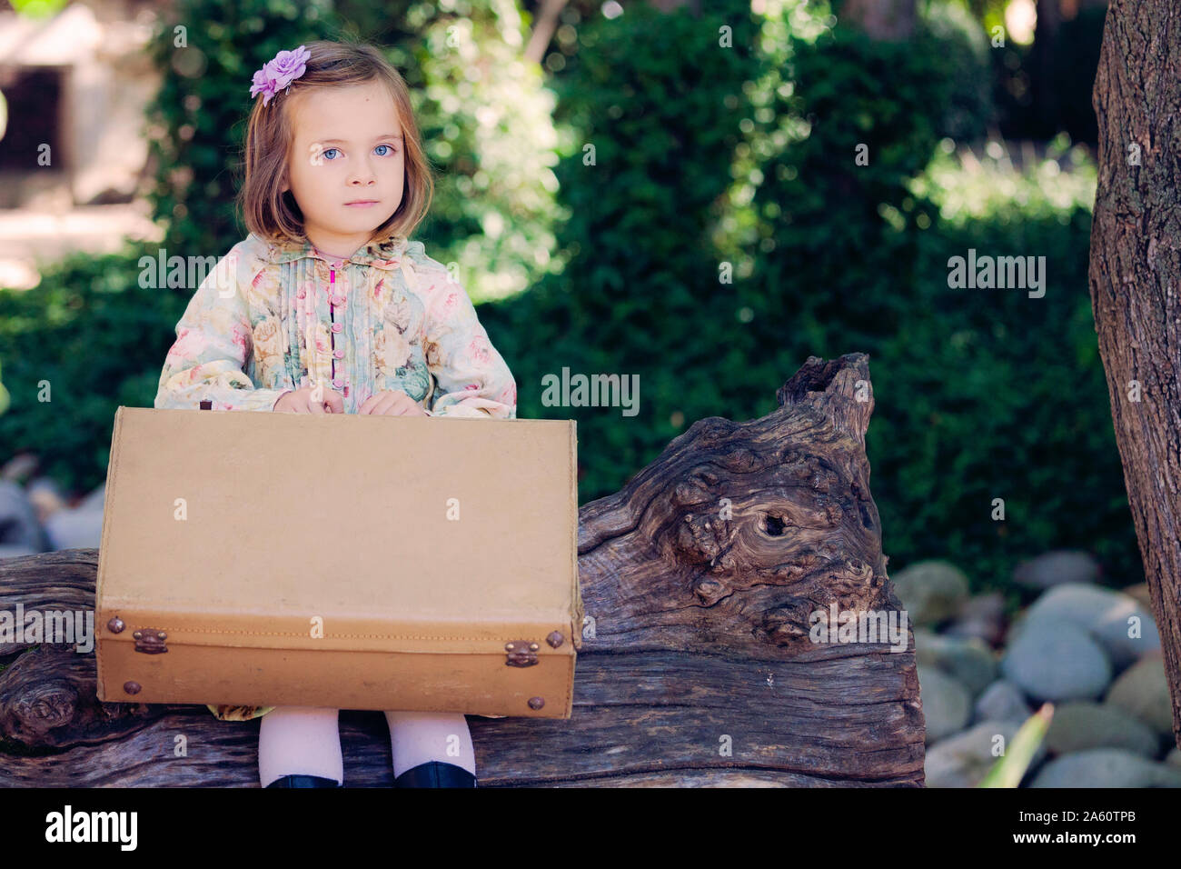 Portrait of little girl sitting on deadwood with leather suitcase Stock Photo