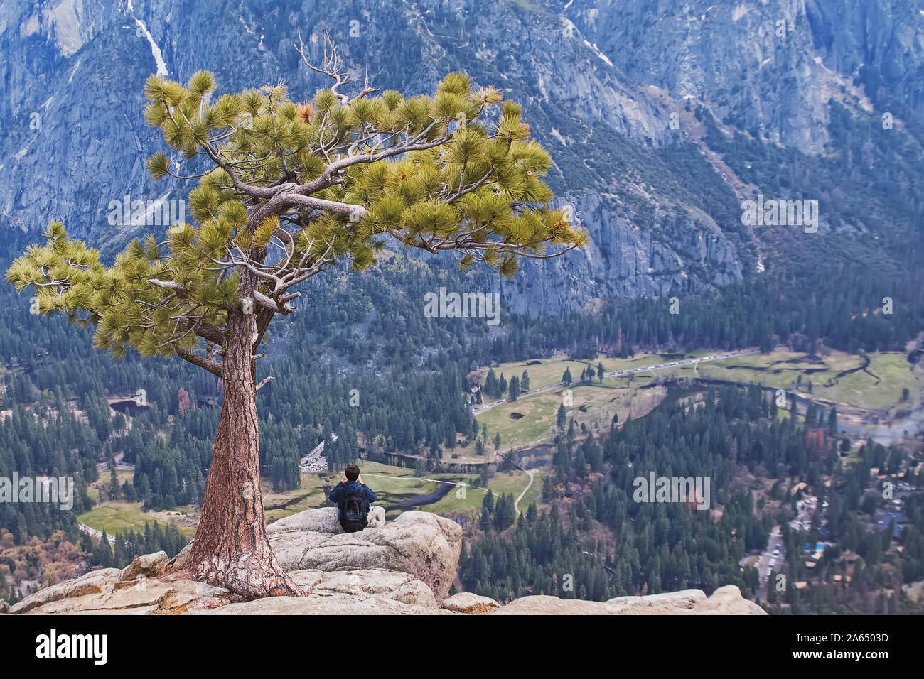 Man sitting under lonely tree on the peak of the rock Stock Photo