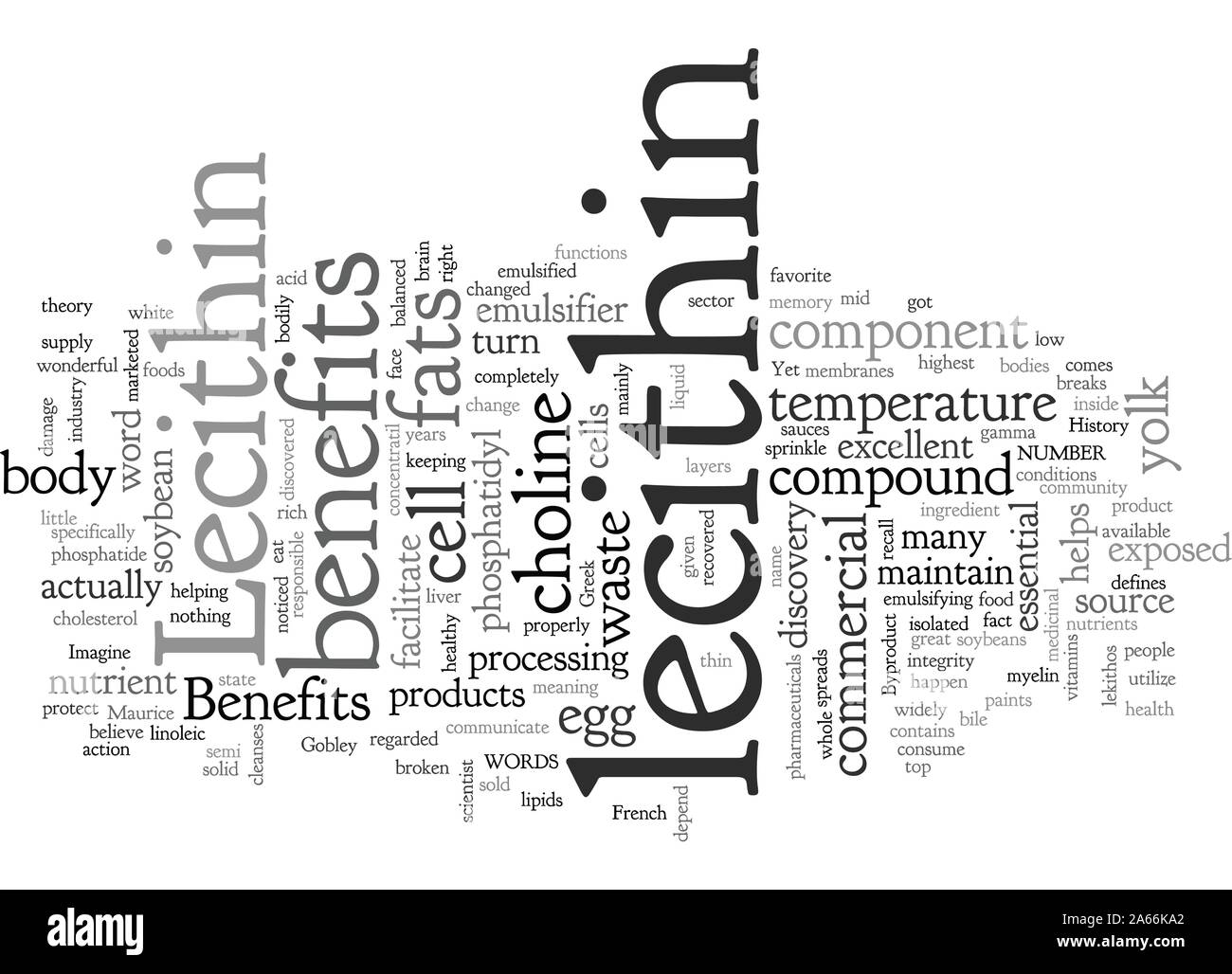 Benefits of Lecithin Stock Vector