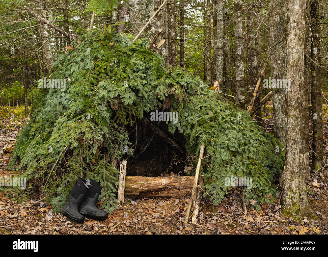 Survival Shelter High Resolution Stock Photography and Images - Alamy