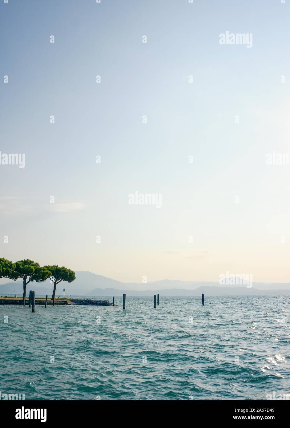 Vertical photo with view over Lago di Garda. Hills and mountains are hidden in fog in background. Few pine trees are on side next to wooden pales in w Stock Photo