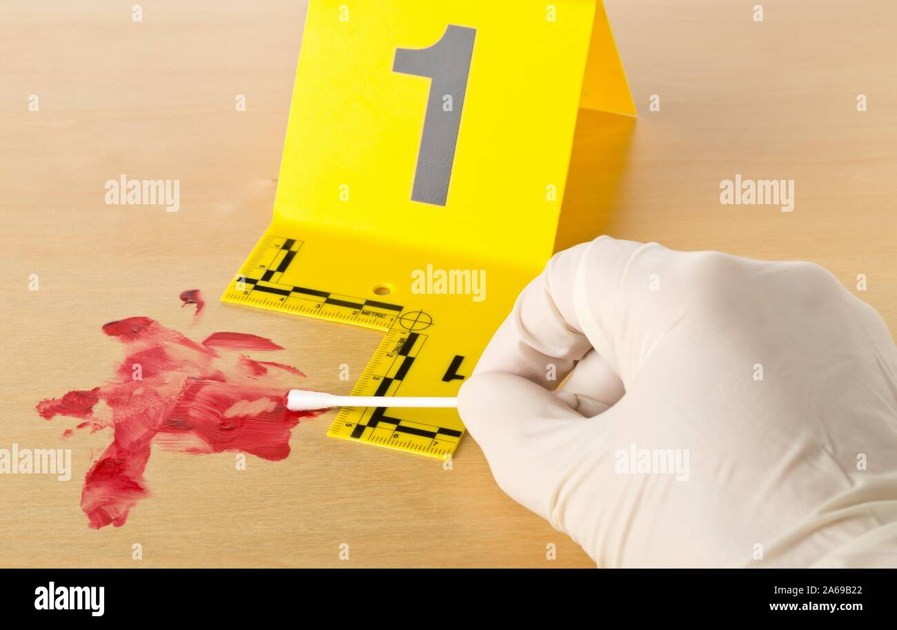 Forensic Investigator Collecting Blood Sample At Crime Scene Investigation With Csi Evidence Marker On Wooden Floor Background Police Evidence Or F Stock Photo Alamy