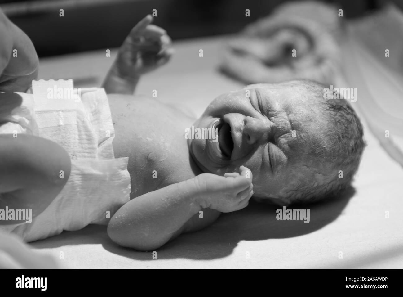 A young baby girl is born premature weighing just 4lbs, pictured here less than 5 minutes old Stock Photo