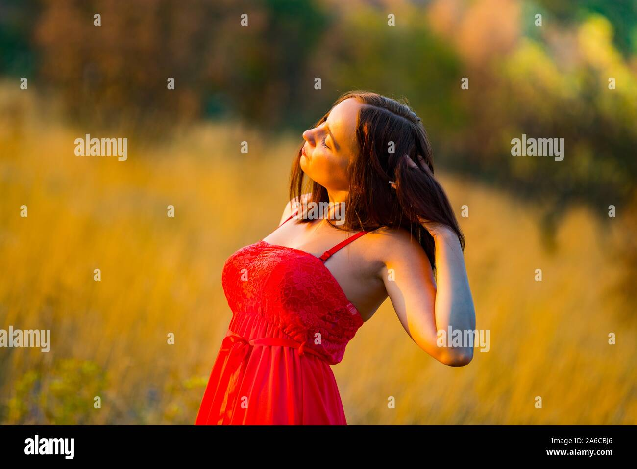 Sunshine warm sunset light isolated from background bokeh Stock Photo