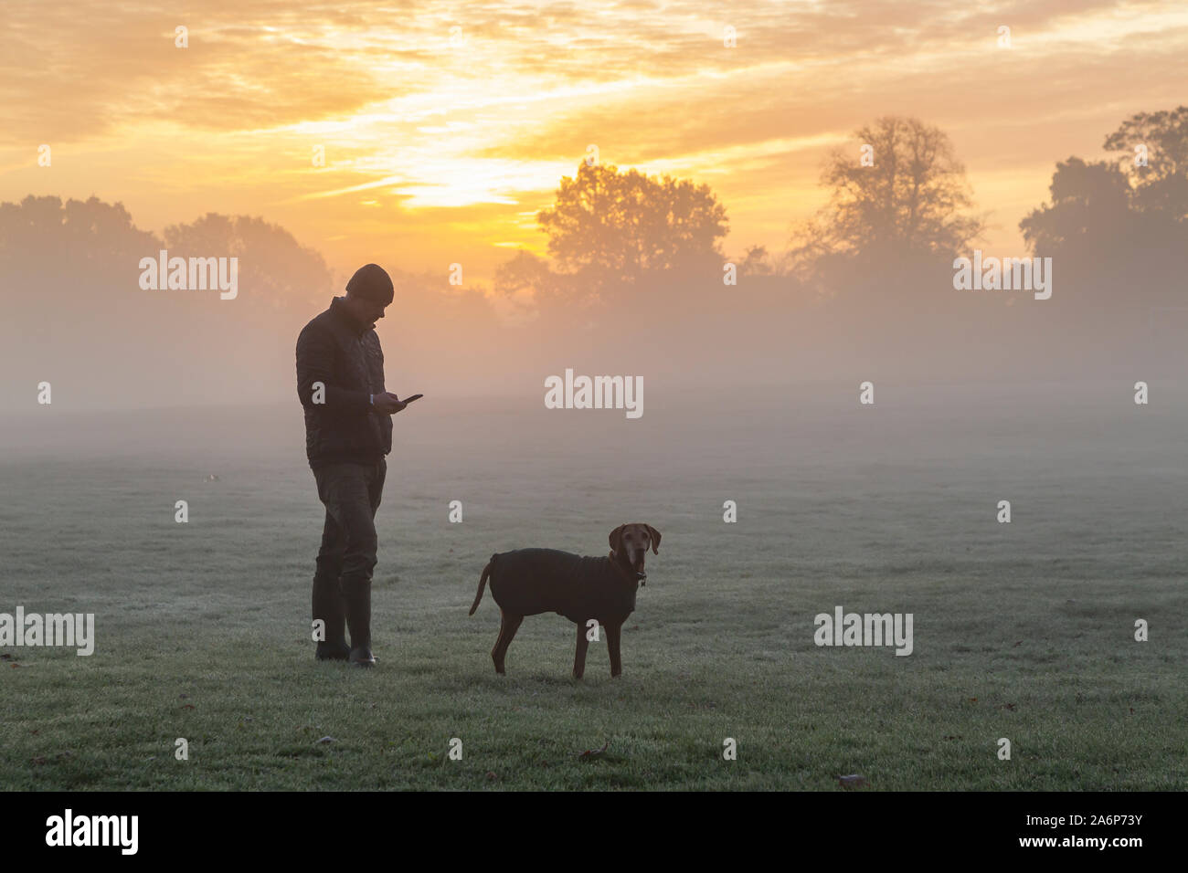 Northampton, UK. 28th Oct, 2019. UK Weather, A man stood using his mobile phone while walking his Hungarian Vizla pets with a spectacular dawn sky behind him over Abington Park a ground mist and a light frost promising another nice day, Credit: Keith J Smith./Alamy Live News Stock Photo