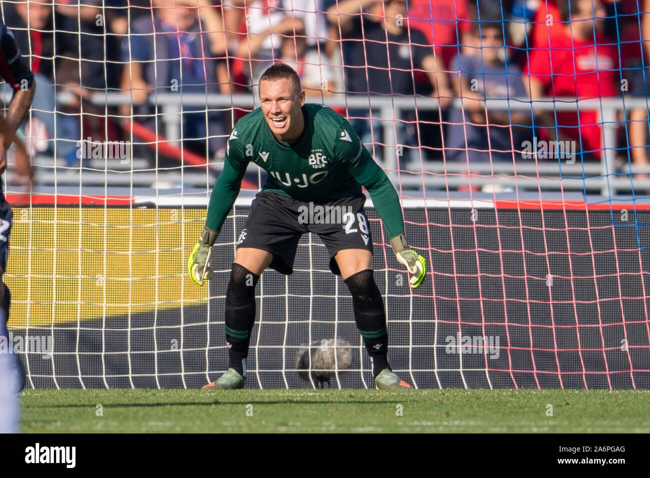 "Bologna, Italy. 27th Oct, 2019. Lukasz Skorupski (Bologna) during the Italian ""Serie A"" match between Bologna 2-1 Sampdoria at Renato Dall Ara Stadium on October 27, 2019 in Bologna, Italy. Credit: Aflo Co. Ltd./Alamy Live News Stock Photo"