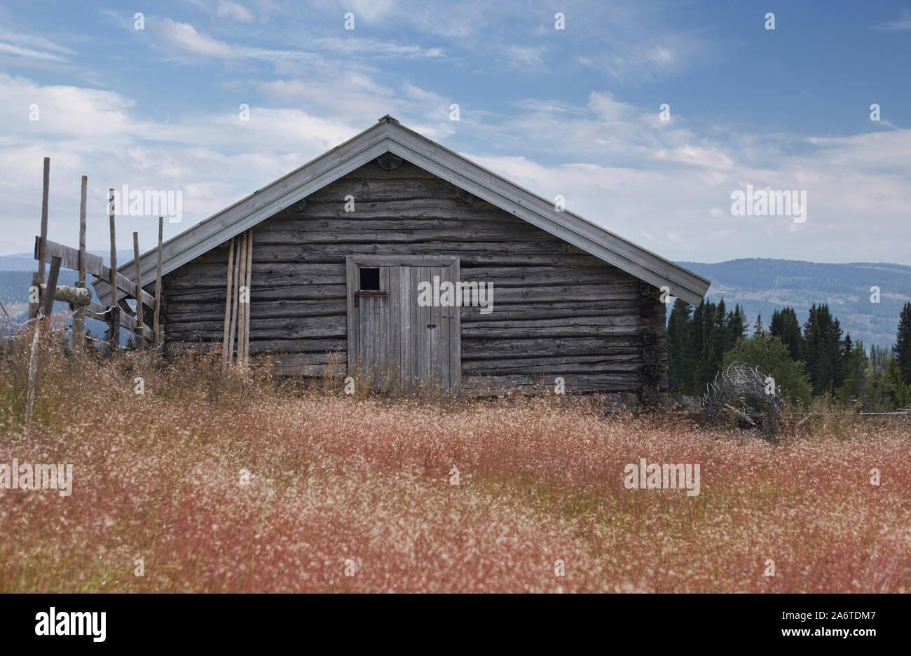 Old barn, shieling, seter, log cabin, Gol, Norway Stock Photo