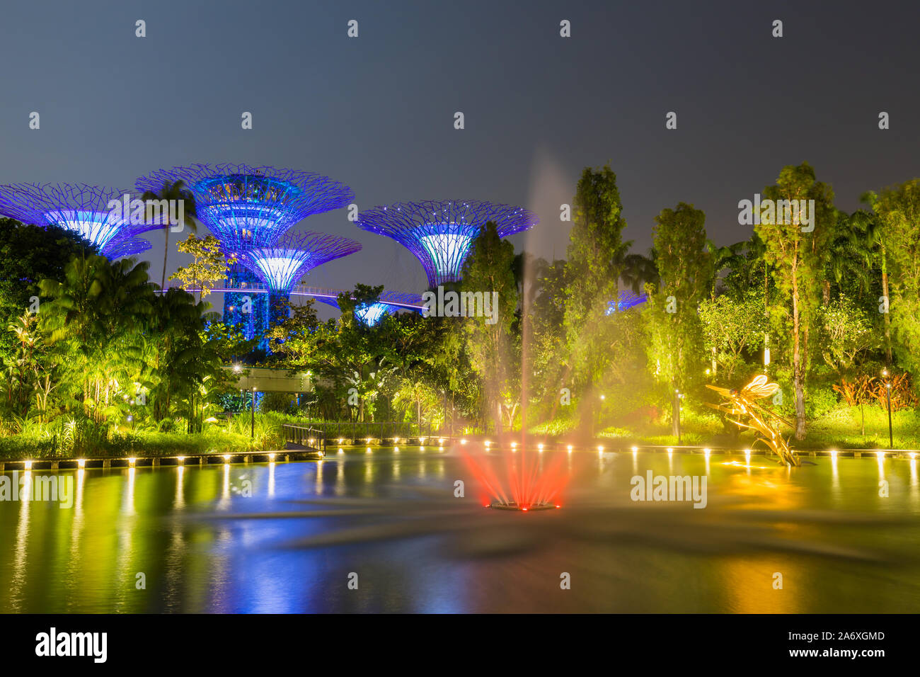Beautiful Night Garden In Singapore And Supertree Grove Forest