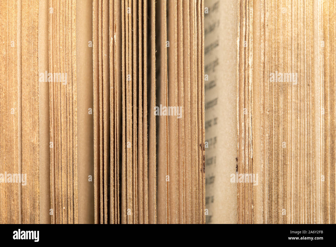 Old books - Pages, binding, gildings. Backgrounds and textures, vintage and ancient knowledge resources. Stock Photo
