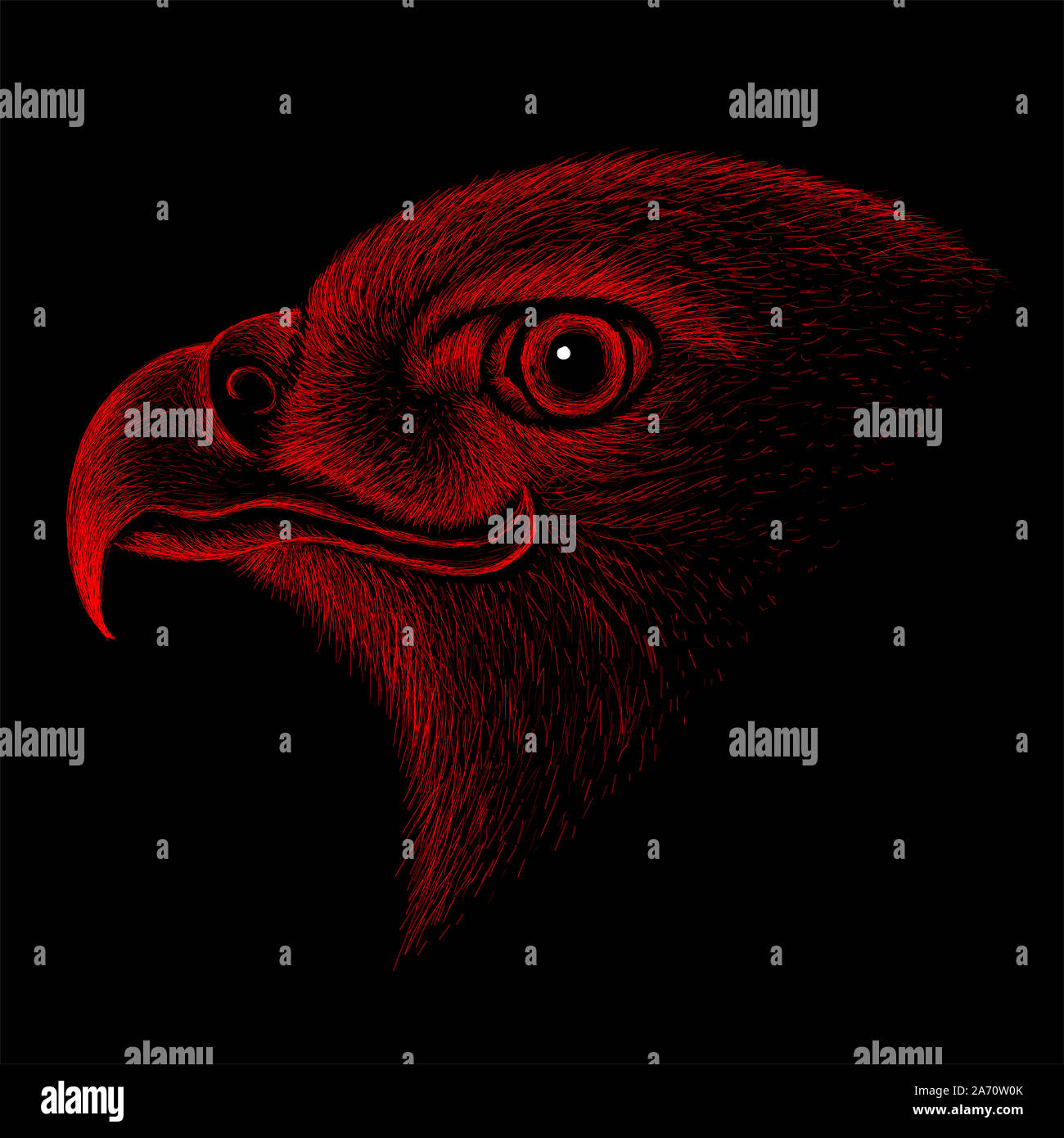 Eagle Head Vector High Resolution Stock Photography And Images Alamy
