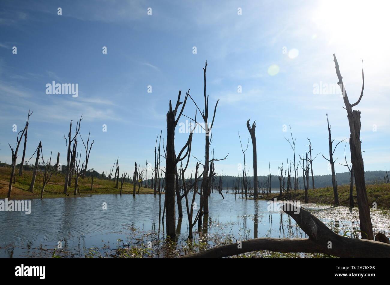 tidal surge, flood zone Stock Photo