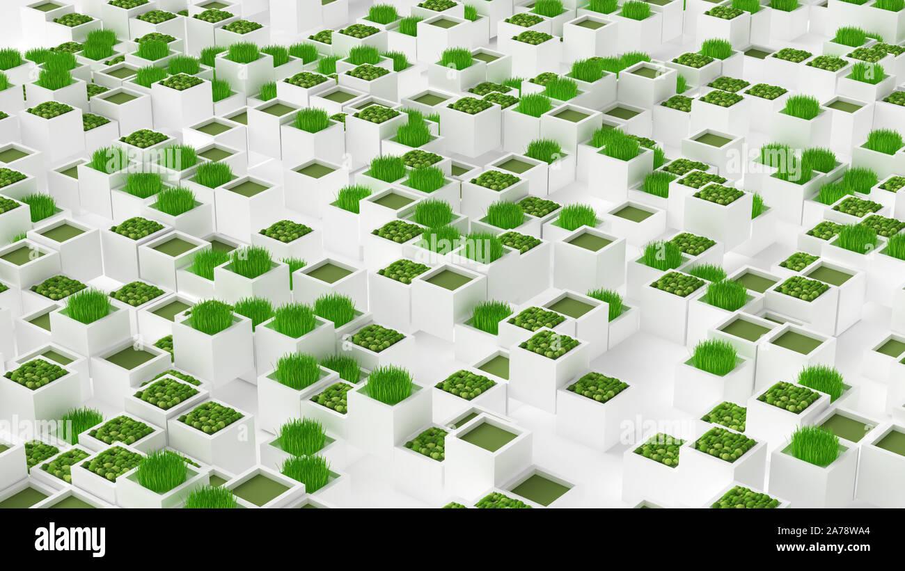 Plant green concept. 3d rendering, 3d illustration. Stock Photo