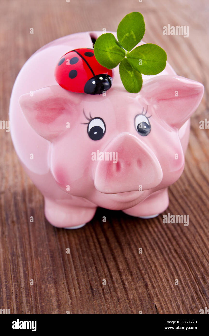 Pink lucky pig with lucky clover on a wooden backgurd Stock Photo