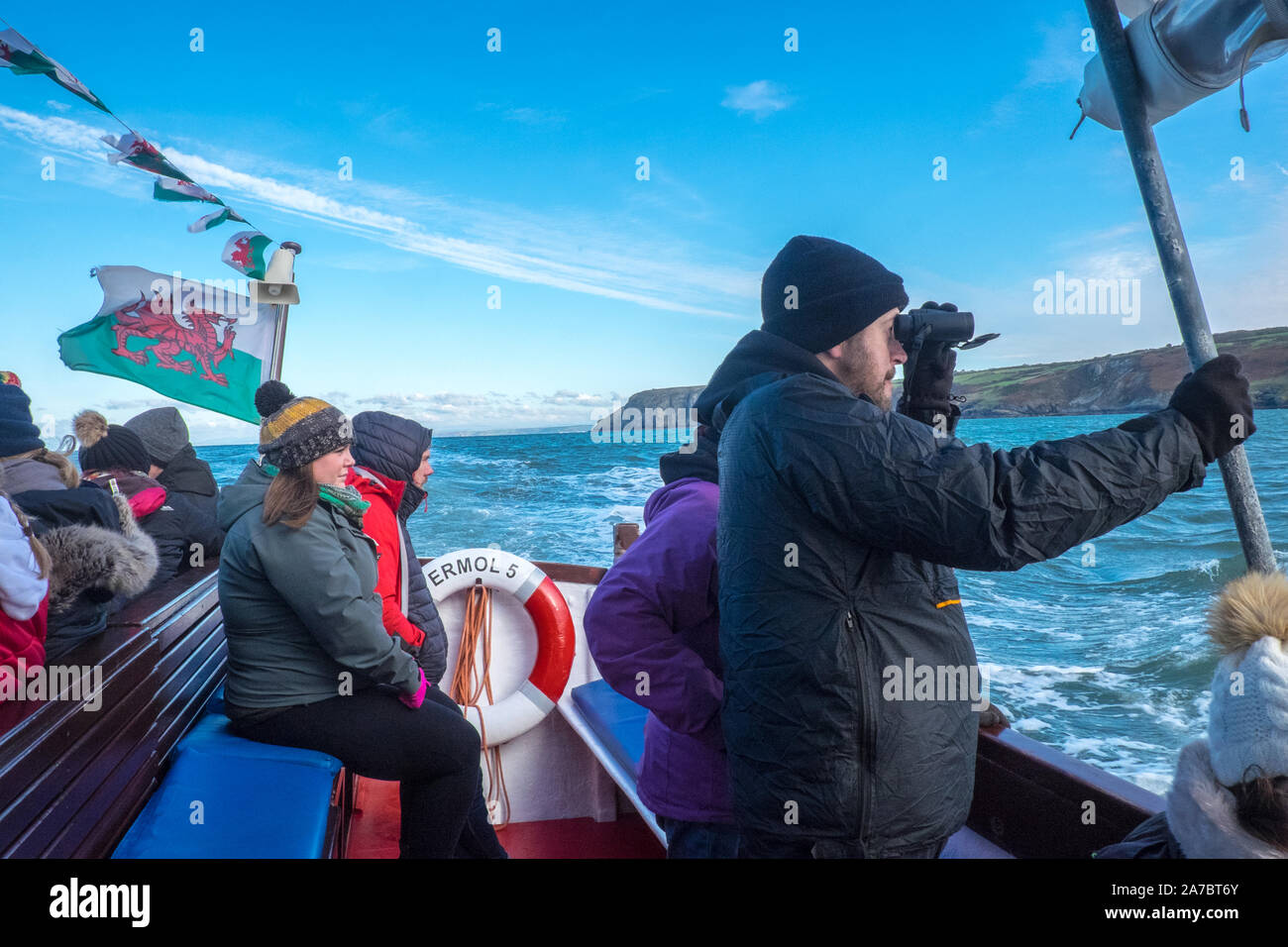 Dolphin watching,boat,Cardigan Bay,NewQuay,New Quay,Newquay,a,popular,fishing,coastal,village,town,popular,for,boat,trips,West Wales,Wales,Welsh,UK,GB Stock Photo