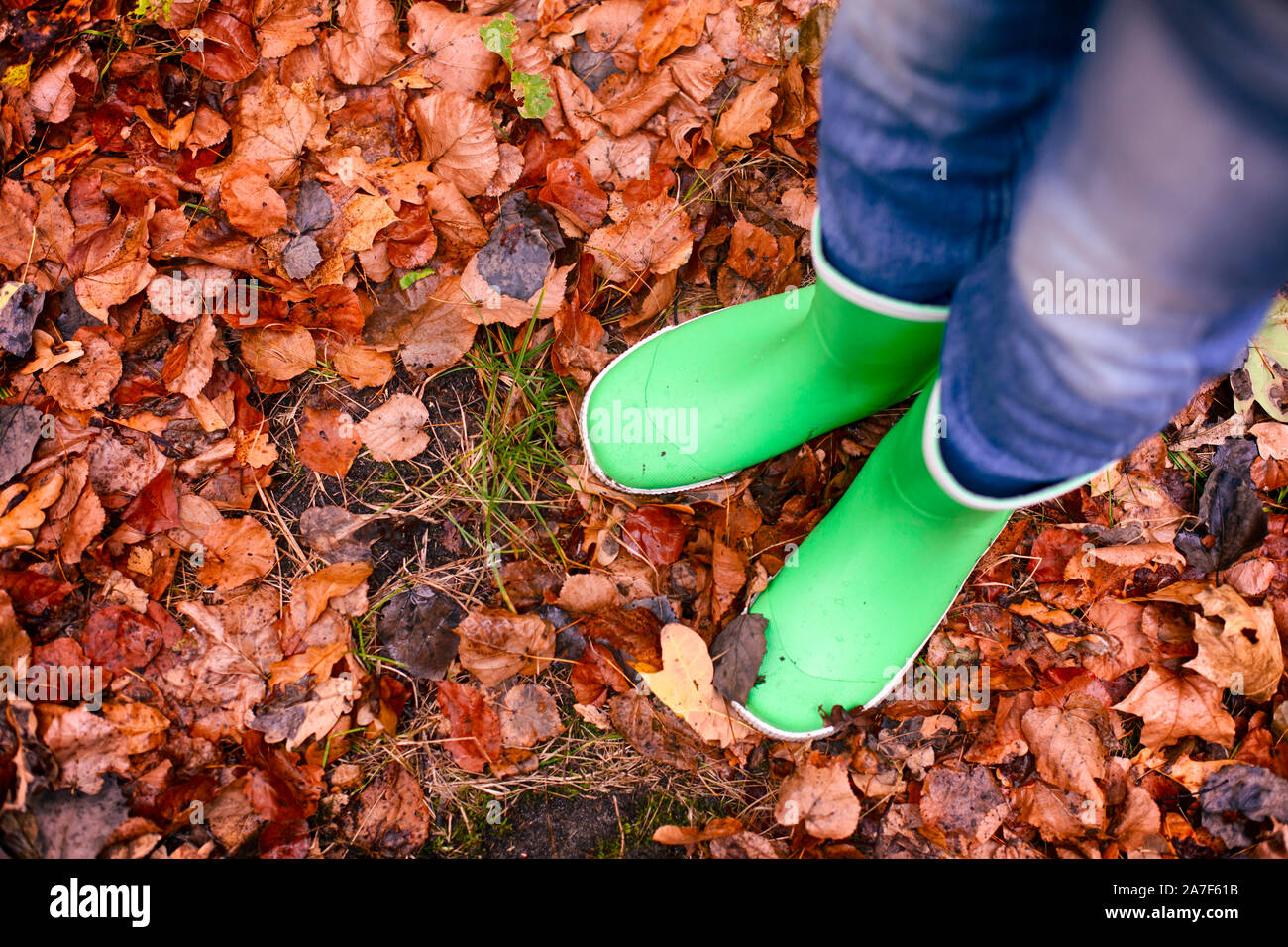 Child in green rubber boots standing on fallen leaves outdoors. Stock Photo