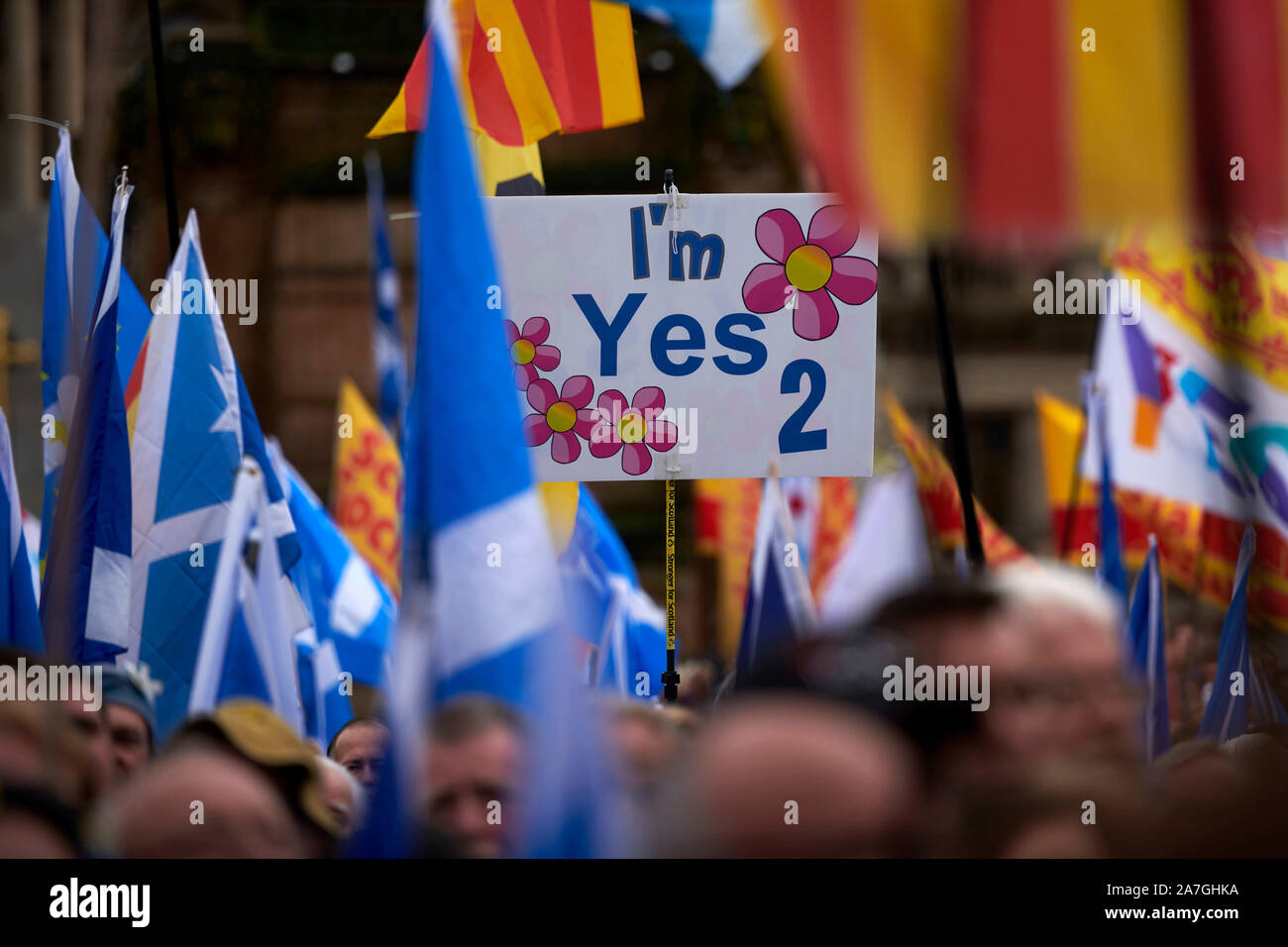 Glasgow, Scotland, UK. 02nd Nov 2019. A rally in support of Scottish Independence takes place in George Square. credit steven scott taylor / alamy live news Stock Photo