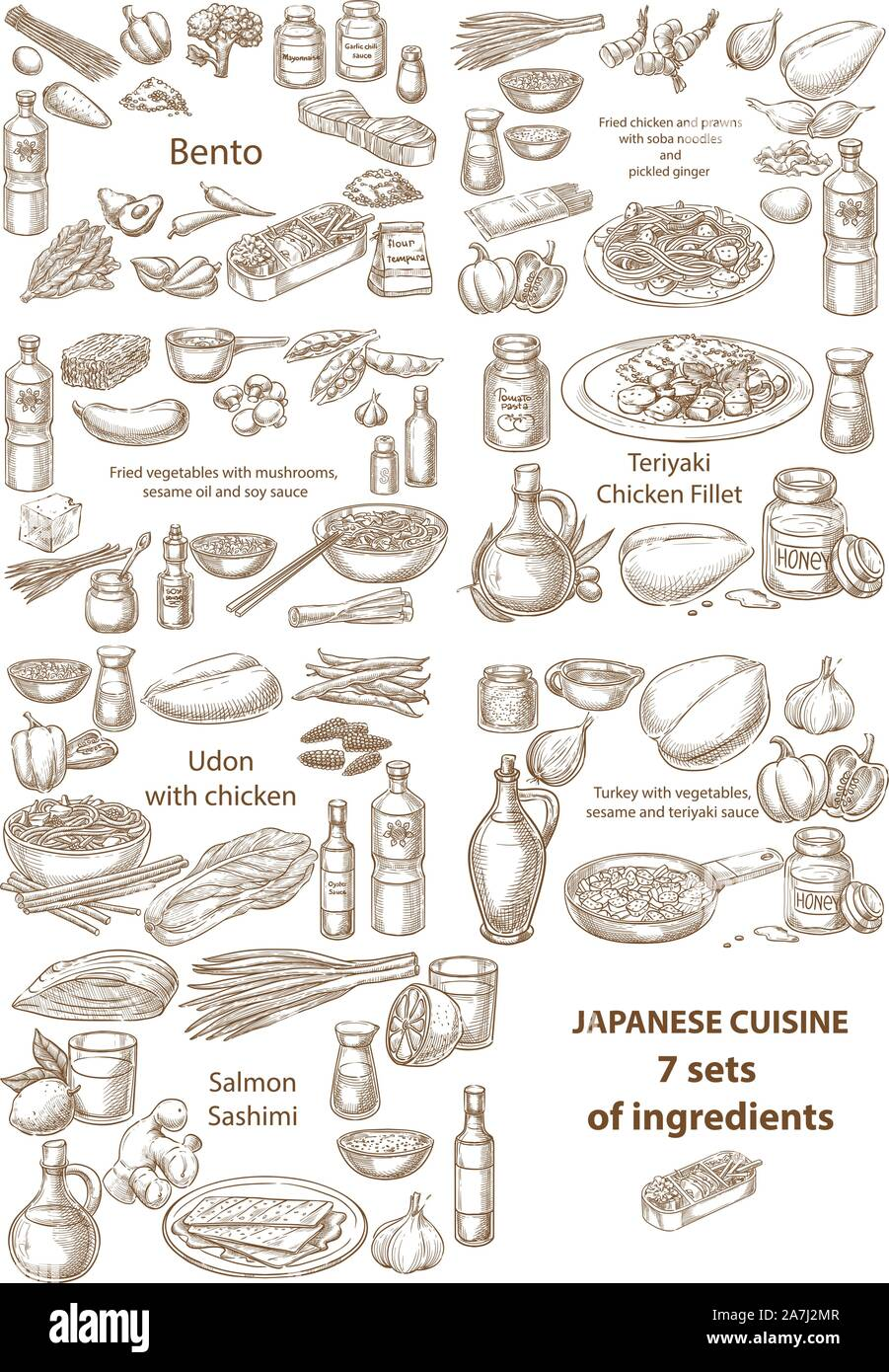 Creative conceptual vector set. Sketch hand drawn Japanese food recipe illustration, engraving, ink, line art, vector. Stock Vector
