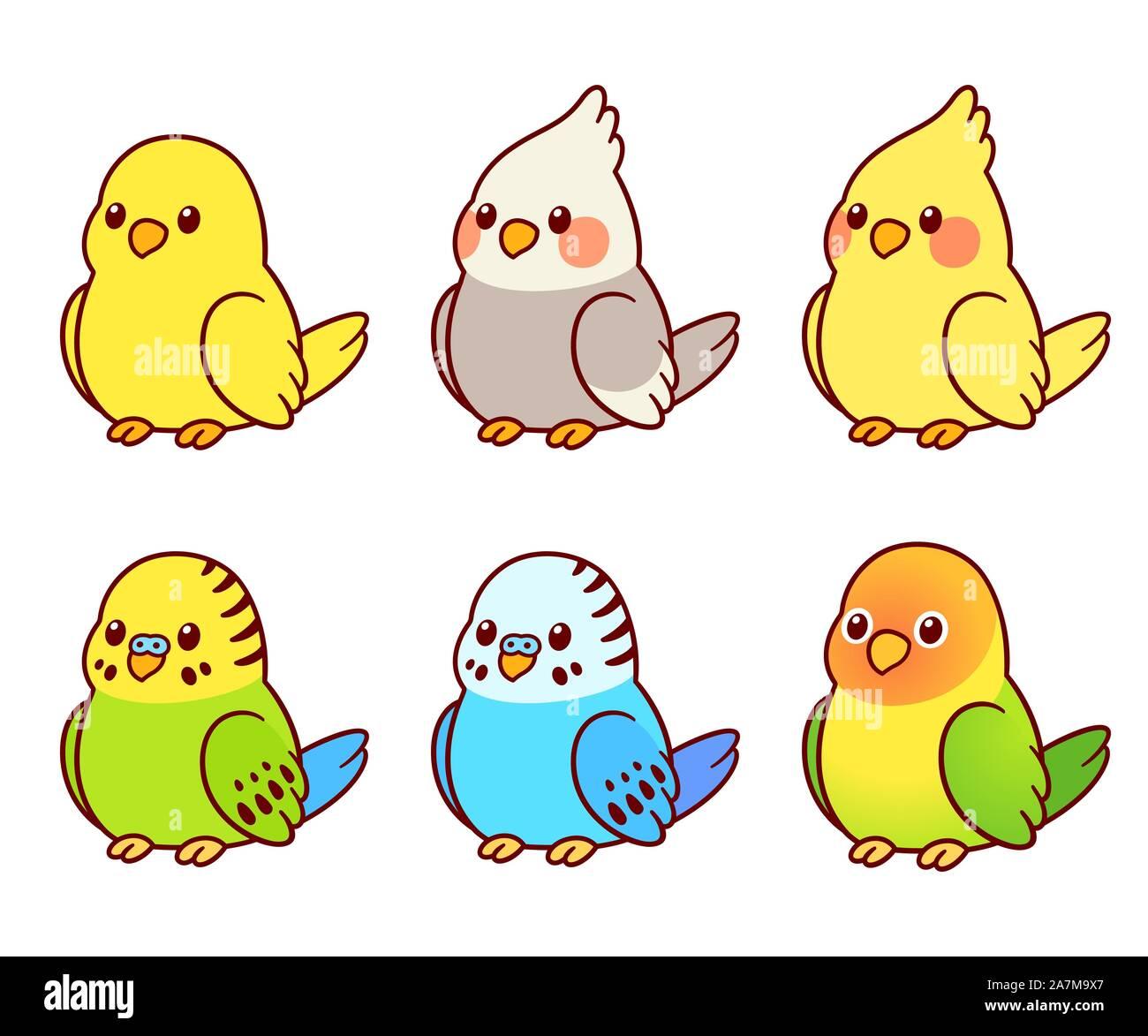 Cute cartoon pet birds illustration set. Cockatiel, parakeet, canary, lovebird. Small parrots isolated vector clip art. Stock Vector