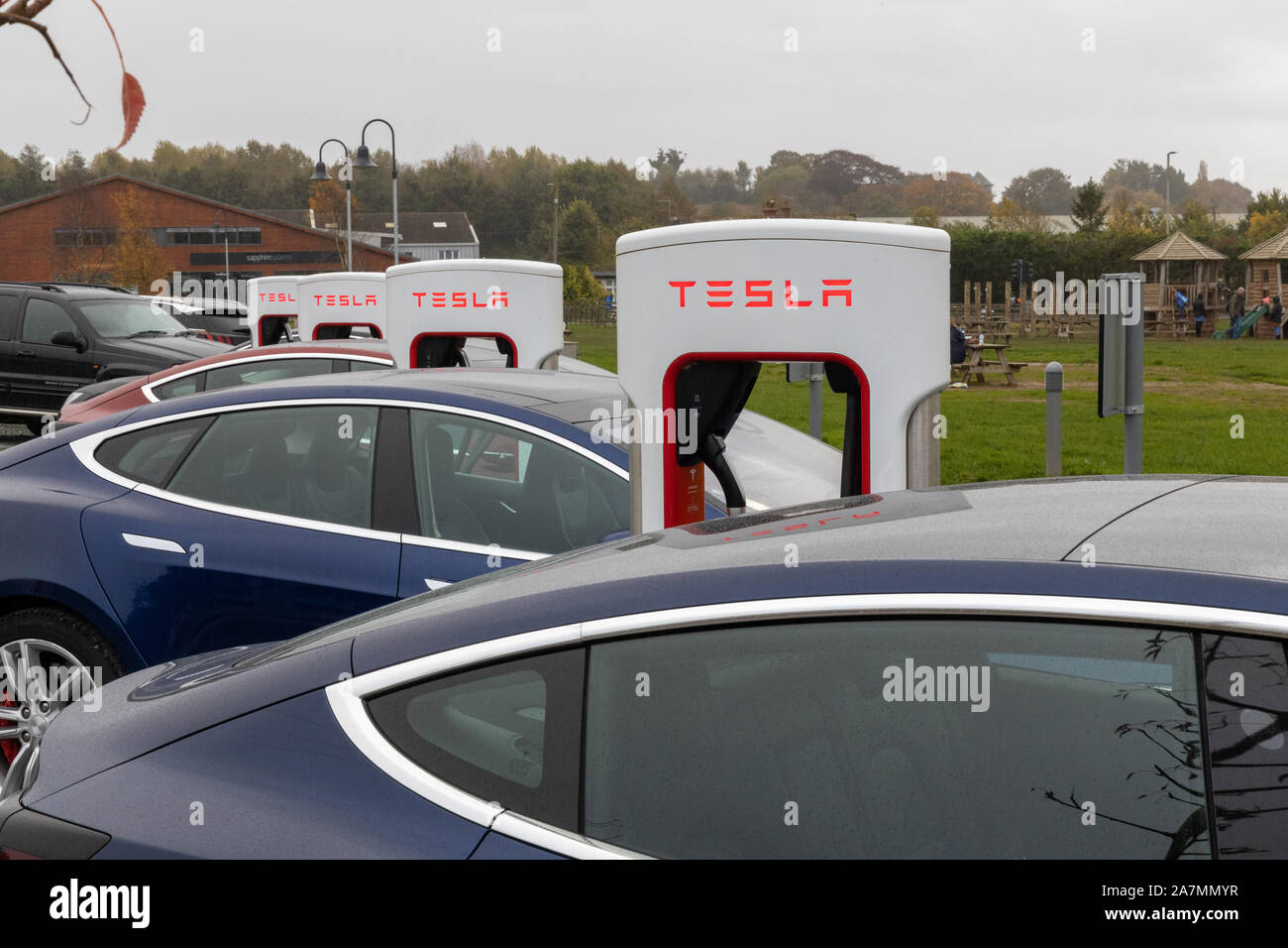 Tesla Cars charging at Darts Farm Superchargers, Exeter, Devon Stock Photo