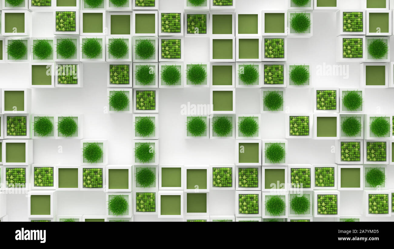 Plant green concept. 3d rendering, 3d illustration. Stock Photo