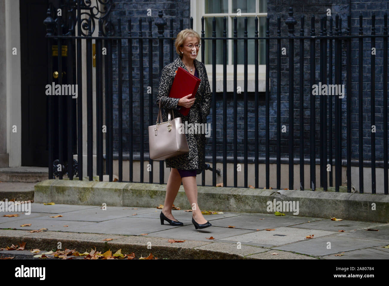 London, UK. 5th November 2019. Andrea Leadsom, Secretary of State for Business leaving Downing Street after a Cabinet Meeting. Claire Doherty/Alamy Live News. Stock Photo