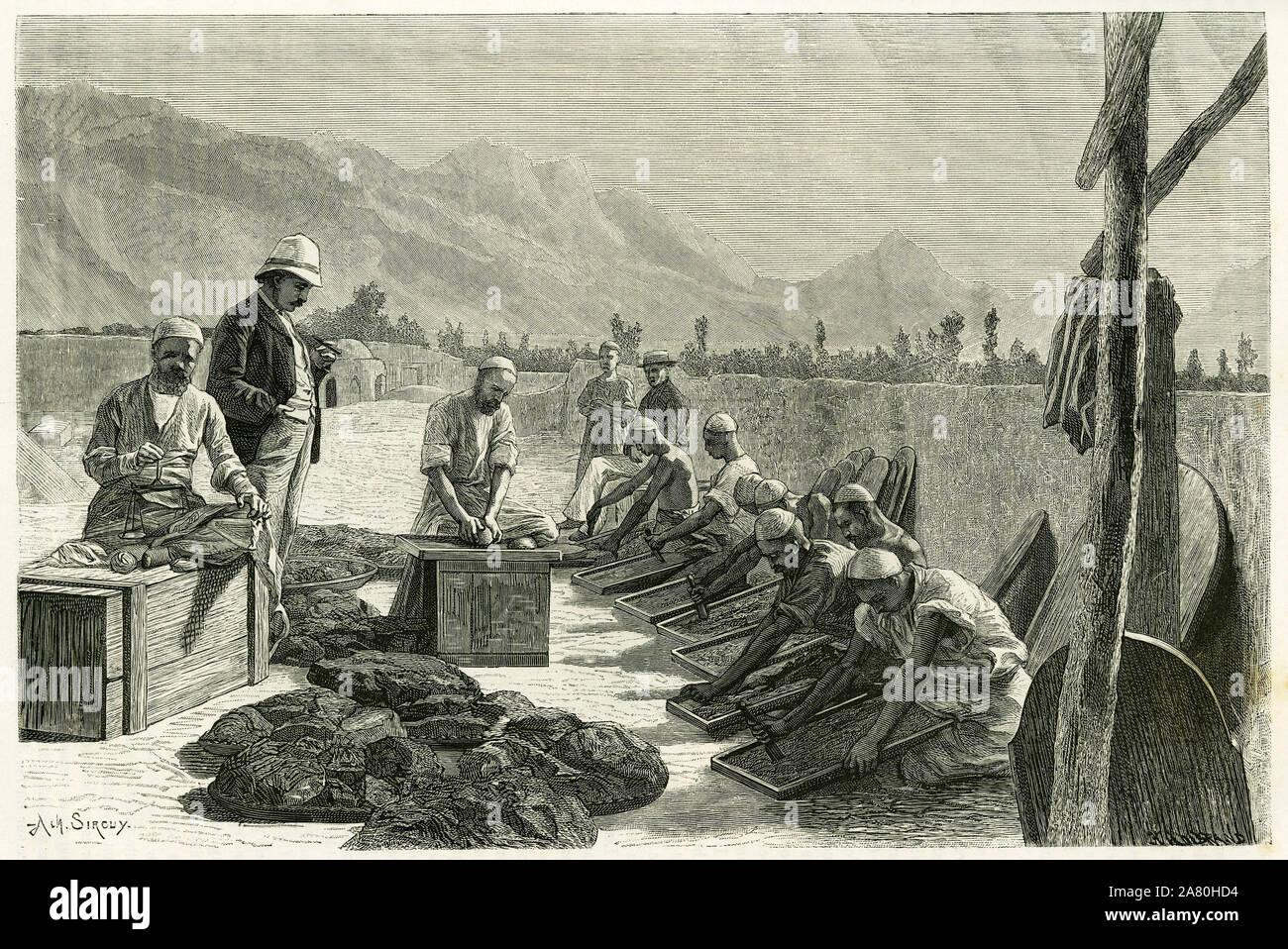 La fabrication de l'opium pharmaceutique, dans la fabrique de M.Collignon, pres d'Ispahan (Iran), apres incision des capsules de pavots et evaporation Stock Photo